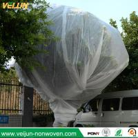 Buy cheap Nonwoven tree protection cover, tree bag/ nonwoven tree protection bag, UV resisted tree ocver from wholesalers
