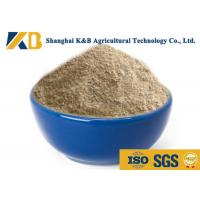 Buy cheap Natural Plant Based Protein Powder / Rice Protein Nutrition No Agglomeration from wholesalers