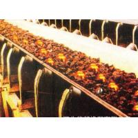 Buy cheap Custom Heat Resistant Conveyor Belt With Polyester Canvas And Rubber Cover product