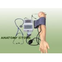 Buy cheap Advanced Blood Pressure Training Arm from wholesalers