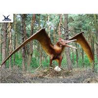 Buy cheap Handmade / Assembling Pterosaurs Realistic Dinosaur Statues Width 5 Meters product