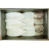 Buy cheap Frozen Squid Tubes and Tentacles, T+T from wholesalers