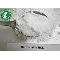 Buy cheap Local Anesthetic Powder Benzocaine Hydrochloride CAS 23239-88-5 from wholesalers