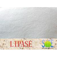 Lipase Enzyme Supplement 90000u G Enzymes In Food Industry