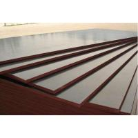 Buy cheap Factory price 18mm black,red,brown Film faced plywood for Construction Material from wholesalers