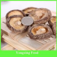 Buy cheap Bag Packaging and Fruit & Vegetable Type Dried Shiitake Mushroom from wholesalers