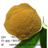 Buy cheap manufacturer supply Natural Sophora Japonica Extract Quercetin Extract 98% Quercetin from wholesalers