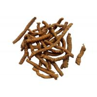Buy cheap Polygala Root P.E.  10:1TLC  effect on Insomnia, dream-disturbed sleep,forgetful-ness from wholesalers
