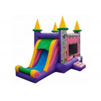 Toddler Funny Princess Bouncy Castle , Purple Disney Princess Bounce House