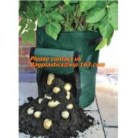Buy cheap Horticulture, NURSERY, PLANTER, SEED, PLASTIC GROW BAGS, HYDROPONICS, FLOWERPOTS, BLACK from wholesalers