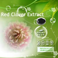 Buy cheap Red Clover Extract 20% Isoflavones(sales03@nutra-max.com) from wholesalers