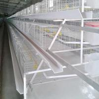 Buy cheap Hot Dipped Broiler Chicken Cage System , Q235 Steel High Tech Poultry Cage from wholesalers