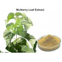 Buy cheap White Mulberry Leaf Extract Powder , Organic Mulberry Leaf Extract Weight Loss from wholesalers