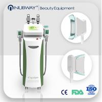 Buy cheap Vertical Cryolipolysis machine therapy venus cryolipolysis fat freezing machine from wholesalers