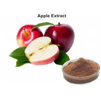 Buy cheap Natural Fruit Extract Powder 80% Polyphneols Apple Extract Antioxidant Powder from wholesalers