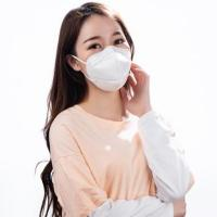 Quality Easy Breathy Anti Pollution Mask N95 Disposable Face Mask For Food Hygiene for sale