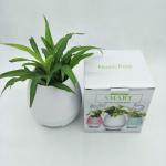 Buy cheap 2017 Crazy Sale Smart Music Flowerpot Touch Plant Piano Music Flower pots Wireless LED Light Bluetooth Flowerpot from wholesalers