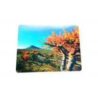 Buy cheap Eco - Friendly Custom Lenticular Printing 3D PP / PVC Table Mat product