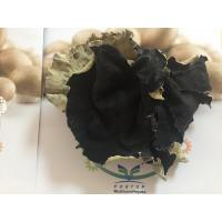 Buy cheap Factory Price Thick Dried White Back Black Fungus Mushroom Whole (5CM ABOVE) Wood Ear from wholesalers
