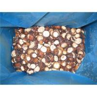 Buy cheap Sell 2010 hot sale wild mushroom from wholesalers