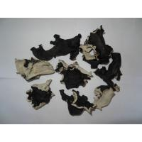 Buy cheap 200G dried white back black fungus from wholesalers
