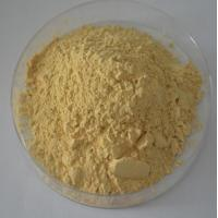 Buy cheap 100% natural Panax Ginseng Extract Ginsenosides 20% -80% UV,CAS Number :41753-43-9 from wholesalers