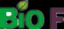 burrillandco.com