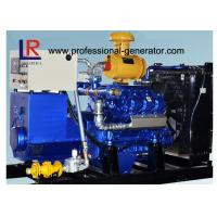 Buy cheap Water Cooled 100kw Biogas Generator with CE , Electric Control Ignition  V Type product