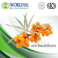 Buy cheap SFE CO2 Extraction,seabuckthorn fruit oil/seabuckthorn india/hippophae rhamnoides oil from wholesalers