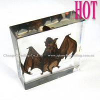 Buy cheap Hot Selling Bat Paperweight Acrylic Specimens product