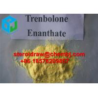 Buy cheap 2322-77-2 Medicine Trenbolone Steroids / Injection Anabolic Steroids Parabolan from wholesalers