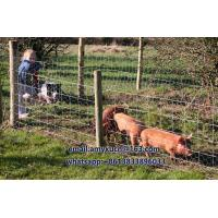 chicken wire fence, rabbit wire fence, horse wire fence, dog wire fence for sale