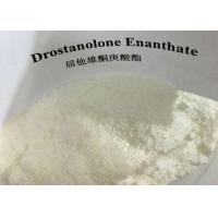 Buy cheap White Powder Masteron Steroid CAS 472-61-145 Drostanolone Enanthate Bodybuilding Supplements from wholesalers