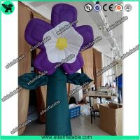 Buy cheap Spring Holiday Event Party Decoration Inflatable Flower, Club Decoration Inflatable from wholesalers