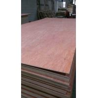 Buy cheap hot sale bintangor face plywood/bintangor plywood/hardwood back bintangor plywood with 4.5 from wholesalers