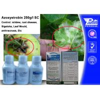 Buy cheap Azoxystribin 250% SC Systemic Fungicides Control Pathogens 131860-33-8 from wholesalers