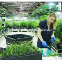 Buy cheap Large plastic growing trays plastic black plastic plant pots with wheels product