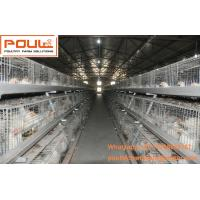 Buy cheap Poultry Equipment Steel Sheet Silver Battery Broiler Chicken Cage  System with Automatic  Feeding&Drinking System from wholesalers
