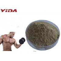Buy cheap Natural Oyster Extract Sex Steroid Hormones Raw Powder Pharmaceutical / Food Grade from wholesalers