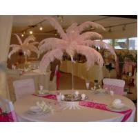 Buy cheap 15cm-75cm feather centerpieces wedding Clothing decoration product