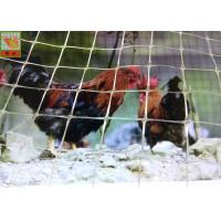 Buy cheap Customized Clear Plastic Chicken Wire Poultry Fence High Tensile Strength from wholesalers
