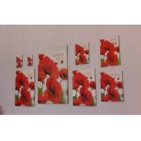 Buy cheap Clip photo frames, collage photo frames, clip snap photo frame from wholesalers