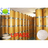 Buy cheap White To Creamy Powdered Enzyme Lipase In Food 30000u/g Szym-LIP30BA from wholesalers