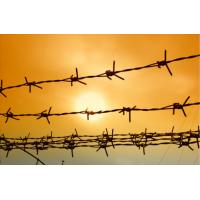 Buy cheap Hot Dipped Galvanzied Barbed Wire Security Fence 20 KG One Roll from wholesalers