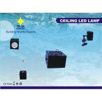 Buy cheap 12000K Energy-saving 36W DC 14V CE, RoHS Certified Aquarium Led Light Fixtures For Tank from wholesalers