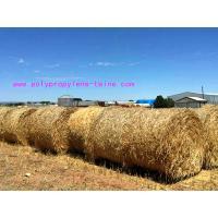 Custom 2G/M Gardening S Twist Hay Baling Twine PP Split Film Rope LT013