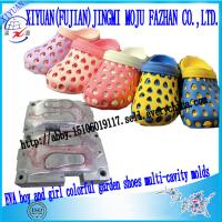 Buy cheap EVA injection two colors boy and girl single-cavity garden shoes molds from wholesalers