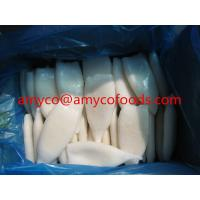 Buy cheap Frozen Squid tube from wholesalers