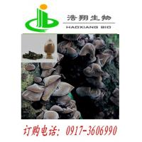Buy cheap Auricularia auricula Extract from wholesalers