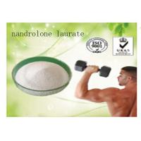 nandrolone msds